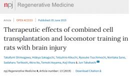【脳外傷に対する再生リハビリテーション】神経細胞移植×運動トレーニング
